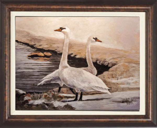 framed Two Swans